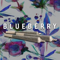 Blueberry (Pre Roll)